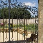 Elégance d'un portail en fer forgé